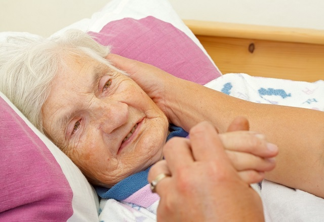Hospice Care Support Services in and near SWFL